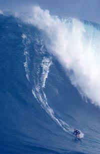 Maui Jaws