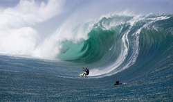 shane dorian billabong xxl big wave
