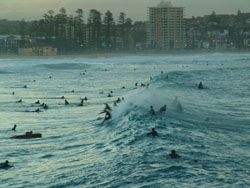 knee high crowded surf